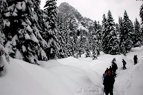 Winter Activities in Jasper Park