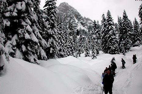 Winter Activities in Jasper Park
