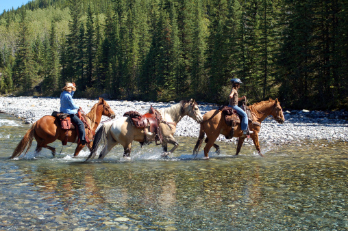 Guided horseback ride in the Canadian Rockies