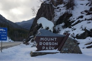 The Mountain Goat on top of the Mount Robson Park Sign